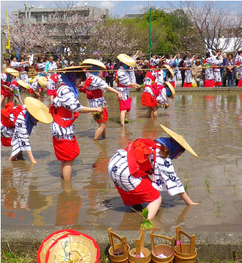神田祭(どろんこ祭り)
